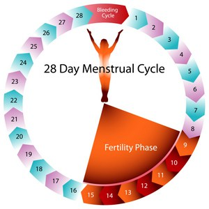 Embrace the (menstrual) flow